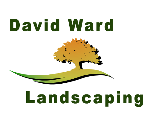 Landscaping by Davidward